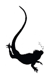 Galapagos Conservation Action Logo