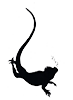 Galapagos Conservation Action Mobile Logo
